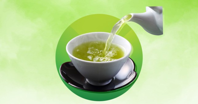 Live Longers with Drinking  Green Tea May be possible
